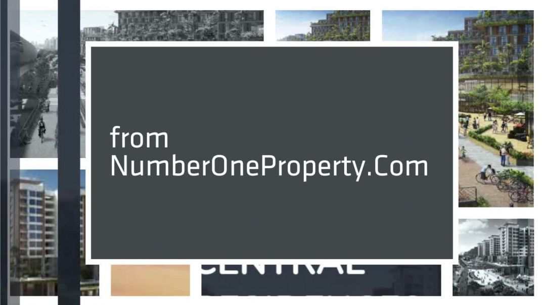 Number_One_Property_720p.mp4